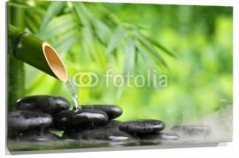 Lienzo Caña de bambu con agua y piedras negras